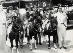 Fez hat ponies