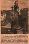 Elephant Helps Wilson Park Pool fund 1950